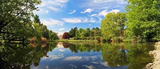 Parco Sempione a Milano Flora.jpeg